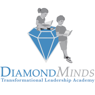 Diamond Minds Transformational Leadership Academy Logo